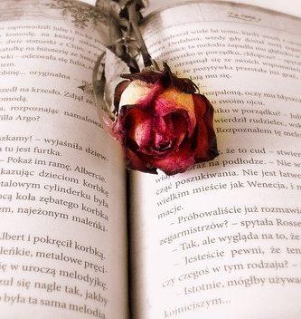 generos y subgeneros de la literatura